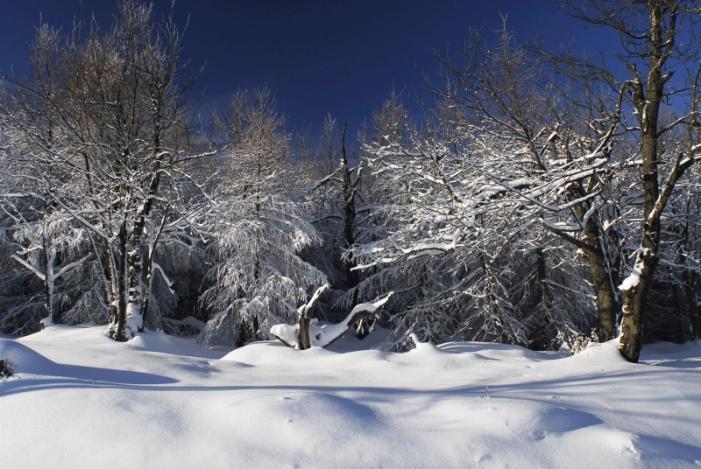 zimn� poh�dka.jpg